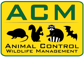 Animal Control Management For Nuisance Wildlife